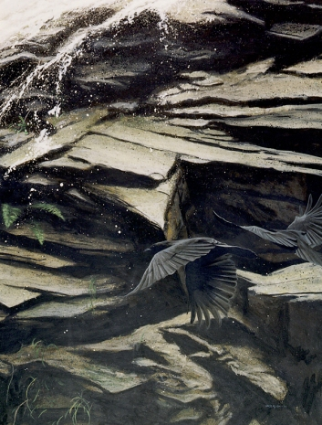 Clayton Anderson, Clayton Anderson Art, J Clayton Anderson, J Clayton Anderson Art, Artist, West Coast Artist, West Coast, West Coast Art, Canadian Art, Canadian Artist, Landscape Artist, Canadian Landscape Artist, Acrylic, Acrylic Painting, Waterfall, Crows, Ravens
