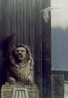 Clayton Anderson, Clayton Anderson Art, J Clayton Anderson, J Clayton Anderson Art, Artist, West Coast Artist, West Coast, West Coast Art, Canadian Art, Canadian Artist, Landscape Artist, Canadian Landscape Artist, Acrylic, Acrylic Painting, Lions Gate Bridge, Stanley Park,