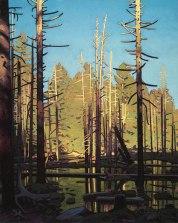 Cedar Pond 30x24 acrylic on canvas
